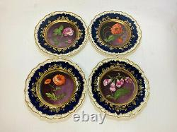 12 Continental Porcelain Hand Painted Botanical Cabinet Plates, 19th Century