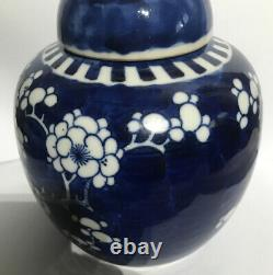 6 ANTIQUE CHINESE BLUE and WHITE PRUNUS GINGER JAR KANGXI DOUBLE RING MARK
