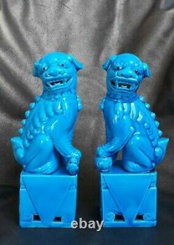 Antique Pair of 21cm Turquoise Blue Porcelain Chinese Foo Dogs