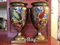 Chelsea House Handpainted Macaw Parrot 11 5/8 Porcelain Lustre Urns (2)