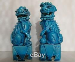 Rare Antique Pair Chinese Turquoise Blue Porcelain Foo Dogs Fitted Wood Stand